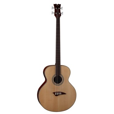 Fretless Acoustic Bass
