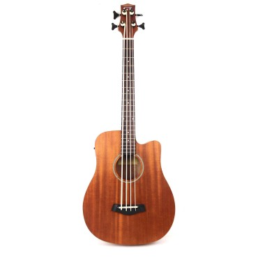 Fretted Acoustic Bass