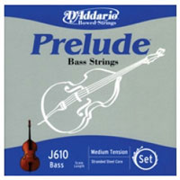 Upright Bass Strings