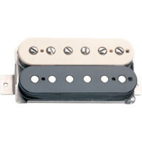 Electric Pickups
