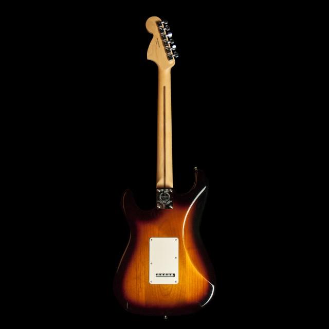 Fender 0115602303DIS Image #2