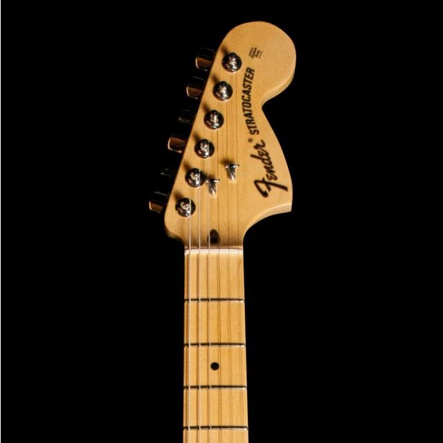 Fender 0115602303DIS Image #3