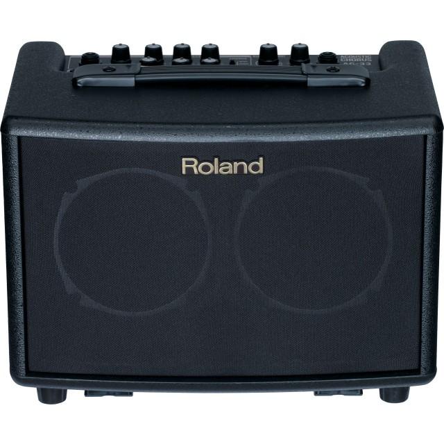 Roland AC33 Image #5
