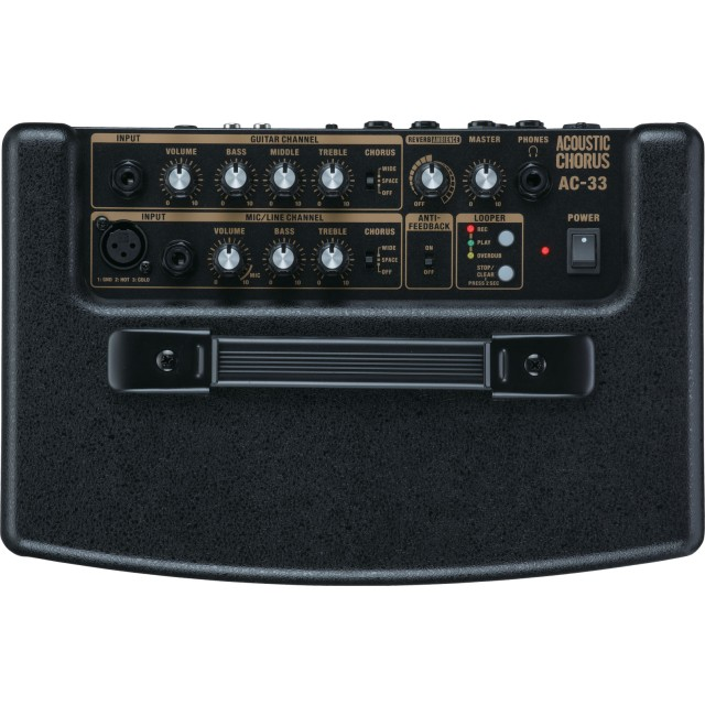 Roland AC33 Image #7