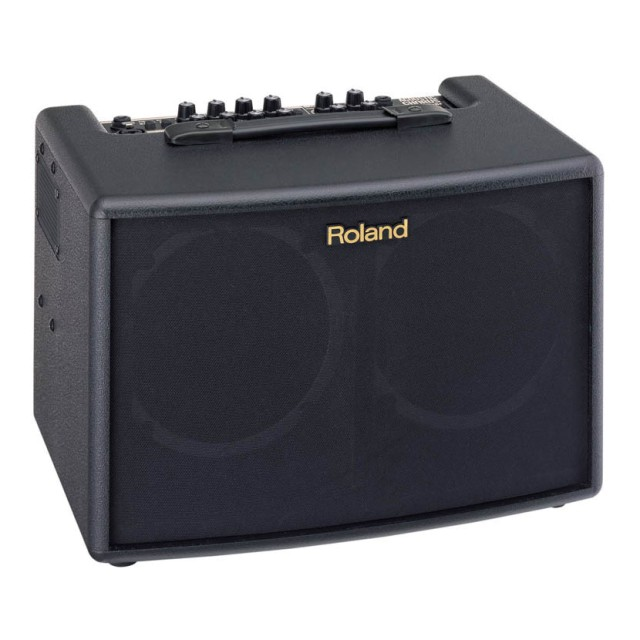 Roland AC60 Image #1
