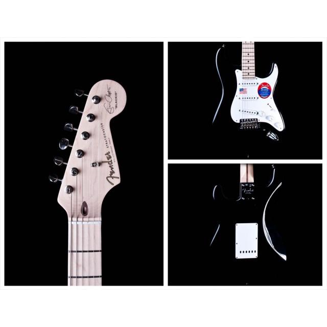 Fender 117602806 Image #2