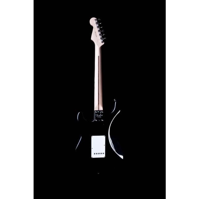 Fender 117602806 Image #4