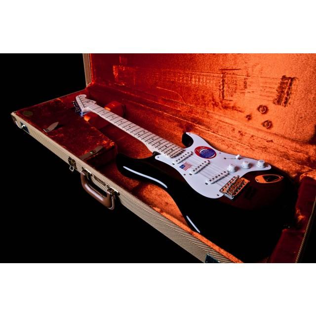 Fender 117602806 Image #6