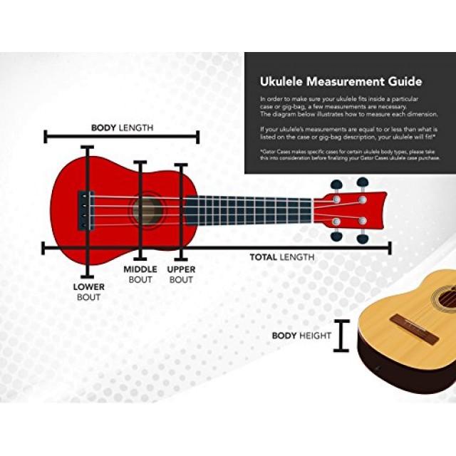 Diagram Parts Of A Mandolin Violin Parts Diagram - Wiring Diagrams
