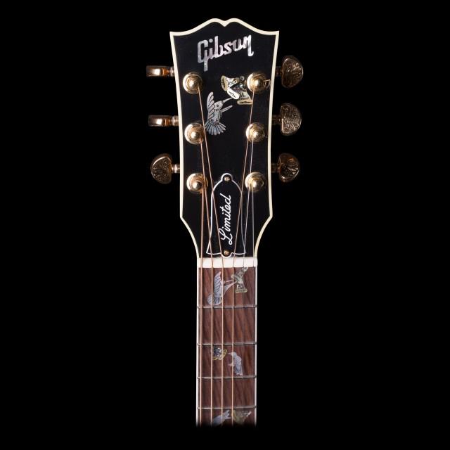 Gibson SSHC17GH1DISEBAYPRO Image #4
