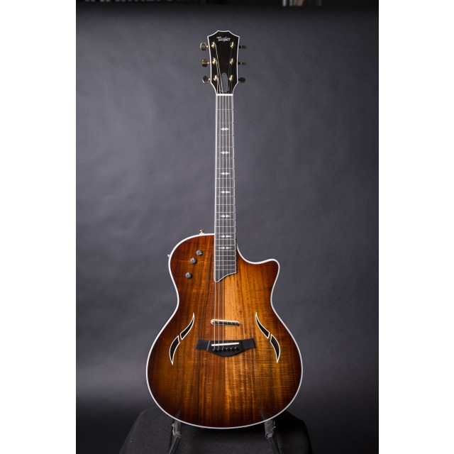 taylor t5 custom acoustic electric hybrid guitar. Black Bedroom Furniture Sets. Home Design Ideas
