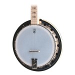 Deering GTREONATOR2 Resonator 2 5 String