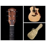 Taylor 114ce Grand Auditorium Acoustic Electric Cutaway with Deluxe Gig Bag