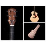 Taylor 214ce Grand Auditorium Acoustic Electric Cutaway with Deluxe Hard Bag