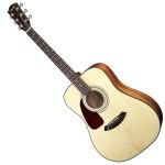 Fender CD140S Lefty Natural Acoustic Guitar