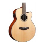 Ibanez AEL108TDNT AEL 8 String Acoustic-Electric Guitar Natural High Gloss