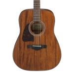 Ibanez AW54 Left Handed - Open Pore Natural