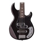 ESP LTD BB-4 4 String Stain Black Bass