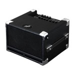 Phil Jones Bass Cub Amp 100W 2X5In Speakers in Black