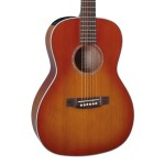 Takamine G Series EG630SW Slot Head New Yorker Acoustic Electric
