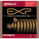 D'Addario EXPPBB170 Acoustic Bass EXP 40-100 Long Scale