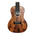 Kala KA-GAC Golden Acacia Thinline Concert Ukulele Solid Acacia Top with Gig Bag