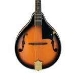 Ibanez M511SBSA Style Solid Top Mandolin In Brown Sunburst