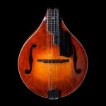 Eastman MD805 A-Style Mandolin Adirondack Top Flame Maple Back and Sides Honey Burst