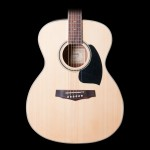 Ibanez PF15WCNT Bundle Performance Series Dreadnought Body Acoustic Natural