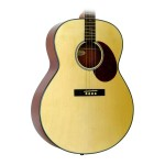 Gold Tone TG10 Tenor Guitar in Natural
