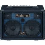 Roland KC-110 30-Watt Keyboard Amplifier