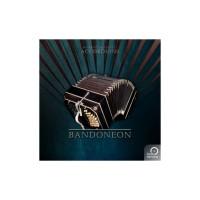 Best Service Accordions 2 - Single Bandoneon Virtual Instrument