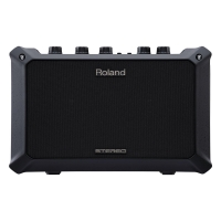 Roland Mobile AC Battery Powered Acoustic Guitar Amp
