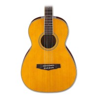 Ibanez PN15ATN Parlor Body Acoustic in Antique Natural Finish