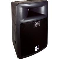 Peavey PR15 15 Pro Light Speaker Enclosure (400 Watts, 1x15 In.)