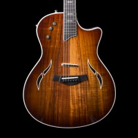 Taylor T5 Custom Acoustic Electric Hybrid Guitar