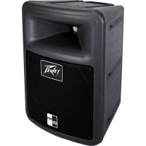 "Peavey PR10 10"" 2-Way Professional Loudspeaker"