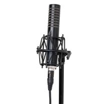 Royer R-101 Ribbon Microphone