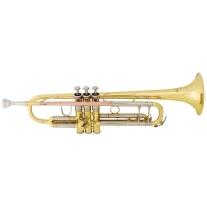 Bach Model TR500