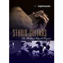 Big Fish Audio Michael Ripoll Project Studio Guitars