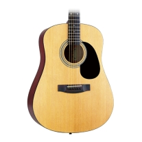 Takamine S35 Acoustic Guitar