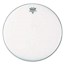 "Remo 6"" Coated Ambassador"