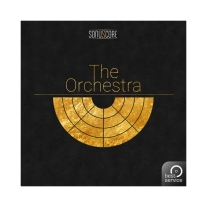 Best Service The Orchestra Virtual Instrument