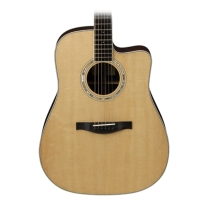Eastman AC420CE 4-Series Acoustic Electric Dreadnought Guitar with Case