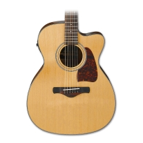 Ibanez AC450CENT Artwood Series Acoustic Electric Guitar in Natural