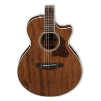 Ibanez AE245JR Acoustic/Electric 3/4 Size Guitar (Open Pore Natural)