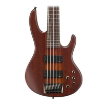 ESP LTD D5 5 String Bass in Natural Satin Finish