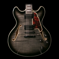 D'Angelico EX-DC Doublecut Semi Hollow Grey Black w/ Case