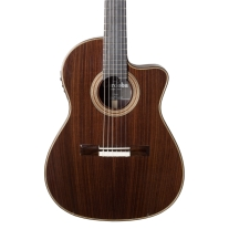Cordoba Fusion 14 Rosewood Classical Acoustic Electric Guitar with Gig Bag