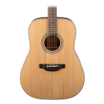 Takamine G Series GD20NS Dreadnought Acoustic Guitar